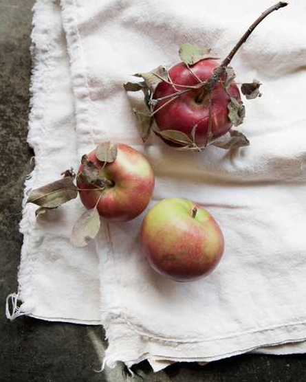 Uncommon Apples (Crop)