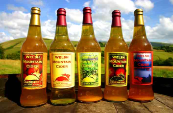Welsh Mountain Cider Vintages